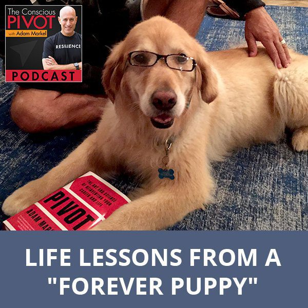 "Life Lessons from a ""Forever Puppy"""