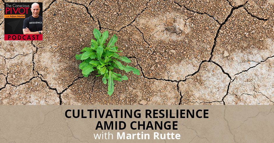 PR Martin | Cultivating Resilience