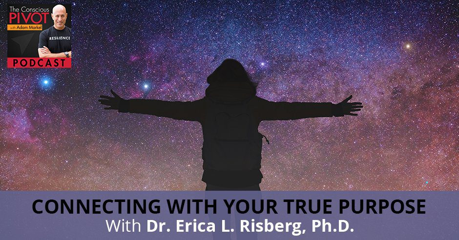 PR Erica | Communication And Resilience