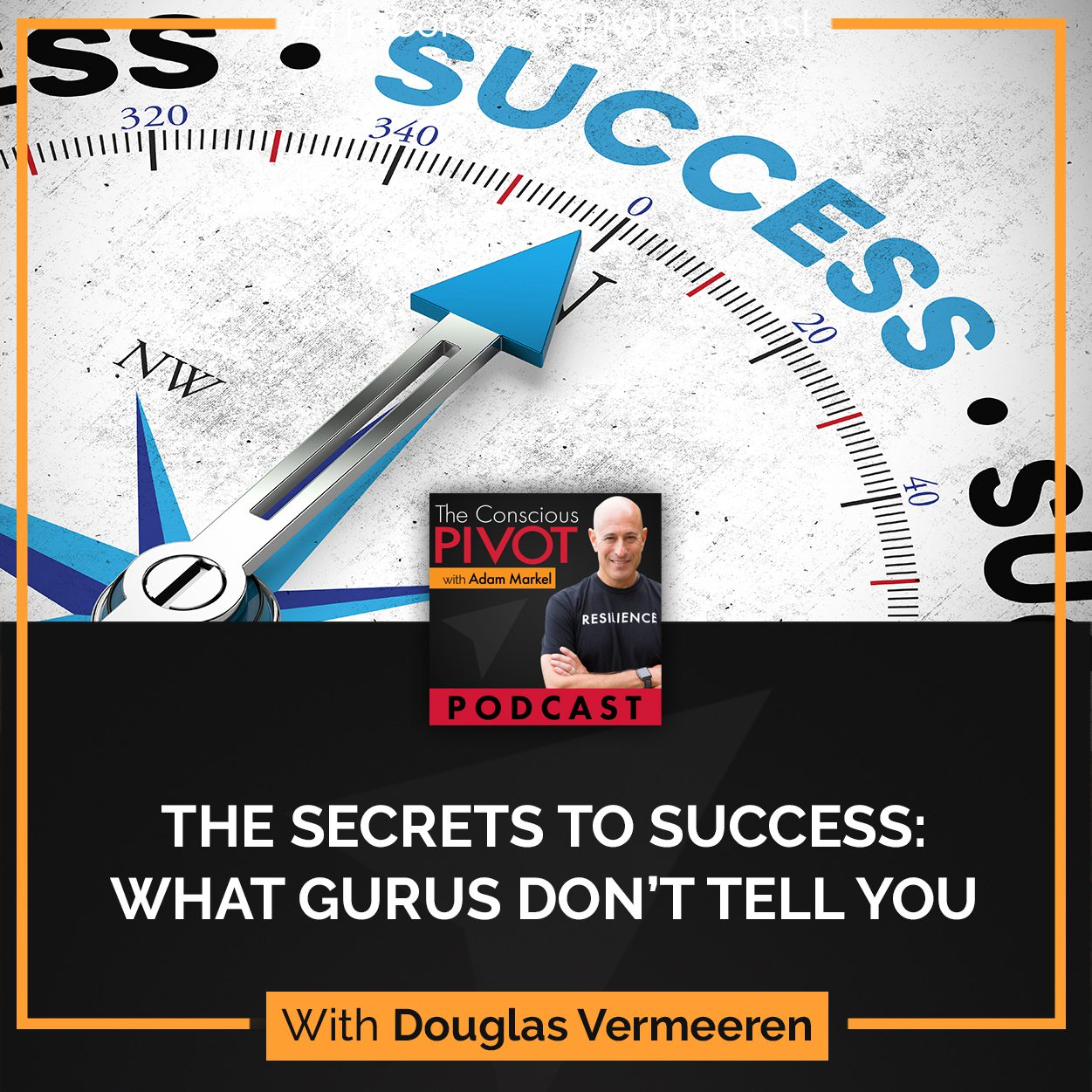 The Secrets To Success: What Gurus Don't Tell You With Douglas Vermeeren