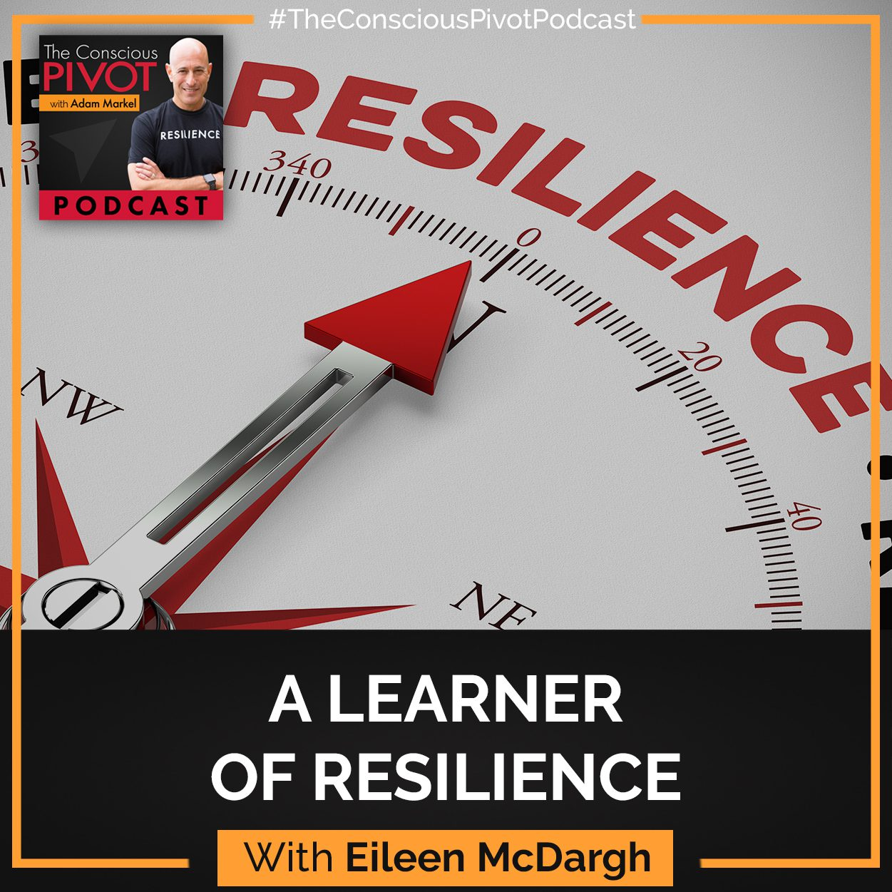 Eileen McDargh: A Learner Of Resilience
